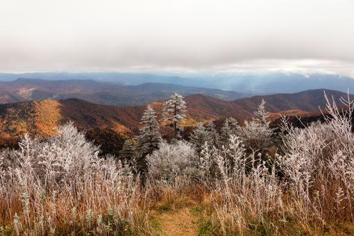 Free Stock Photo of Frosted Autumn Smoky Mountains