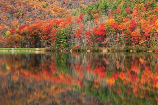 Free Stock Photo of Autumn Reflections - Sherando Lake