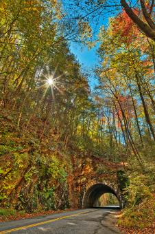 Free Stock Photo of Laurel Creek Sunburst Tunnel