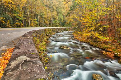 Free Stock Photo of Winding River Road - Great Smoky Mountains