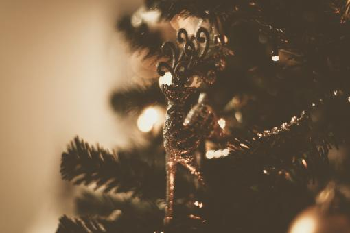 Free Stock Photo of Christmas Tree Reindeer Ornament