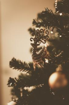 Free Stock Photo of Reindeer Christmas Tree Ornament