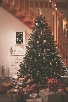 Free Stock Photo of Christmas Tree with Presents