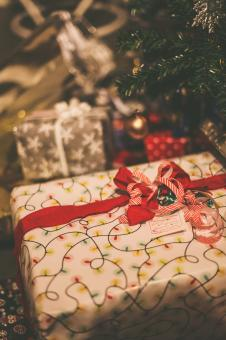 Free Stock Photo of Christmas Presents under the Tree