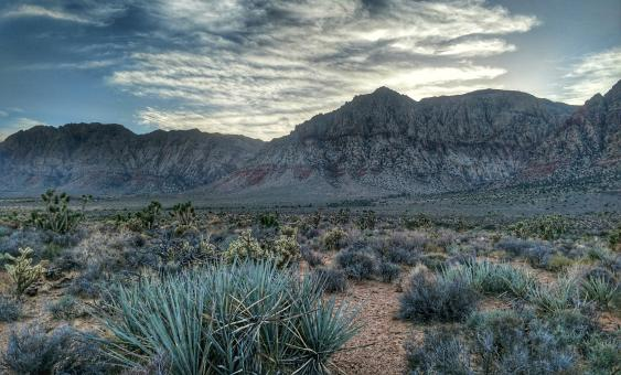 Free Stock Photo of Red Rock Canyon Landscape