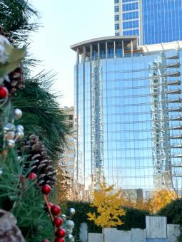 Free Stock Photo of Christmas season decorations in Charlotte city