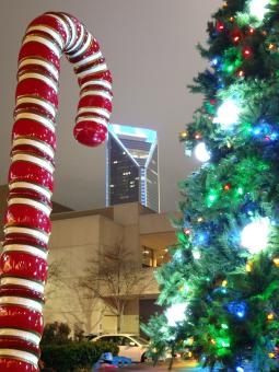 Free Stock Photo of Charlotte Christmas Season Lights and Decorations