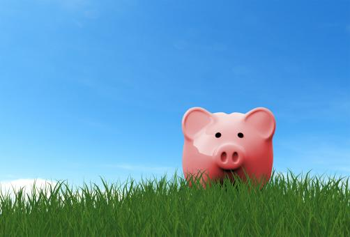 Free Stock Photo of Piggy Bank on the Grass - Savings Concept