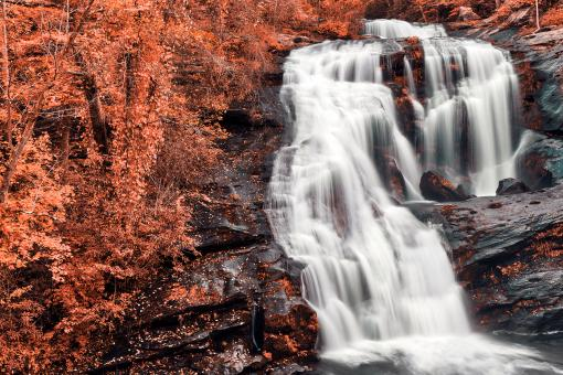 Free Stock Photo of Bald Salmon River Falls