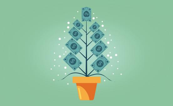 Free Stock Photo of Money Growing on Tree - Capital Appreciation Concept