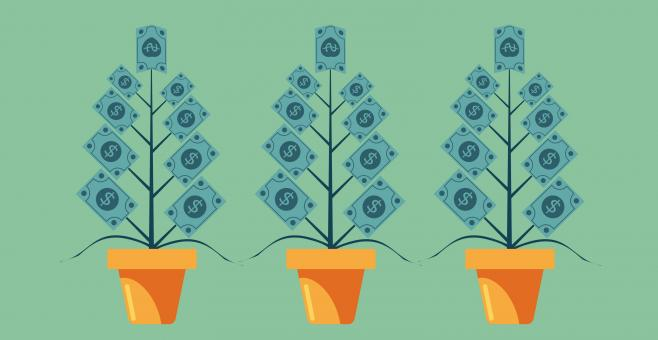 Free Stock Photo of Money Growing on Trees - Capital Appreciation Concept