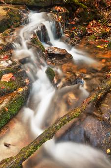 Free Stock Photo of Hammer Branch Autumn Stream