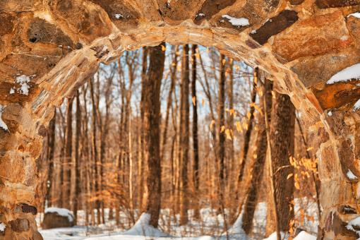 Free Stock Photo of Warm Winter Celtic Eye