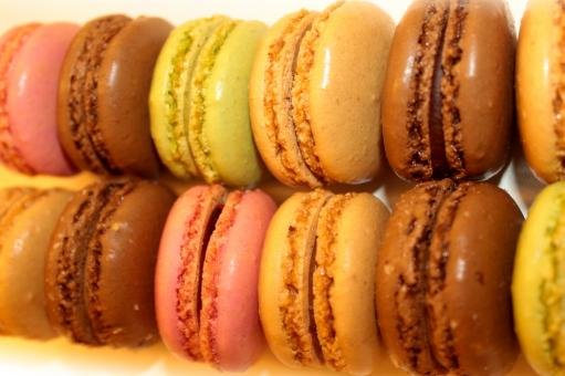 Free Stock Photo of Sweets and Cookies - Rows of French Macaroons