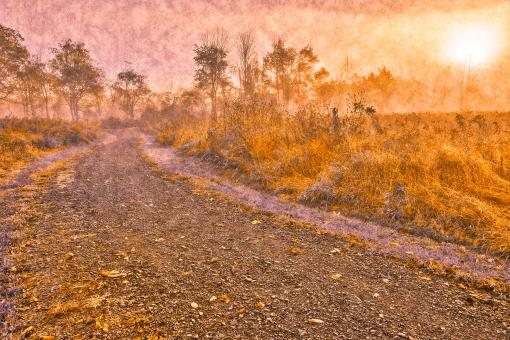 Free Stock Photo of Misty McDade Trail - Pastel Velvet Fantasy