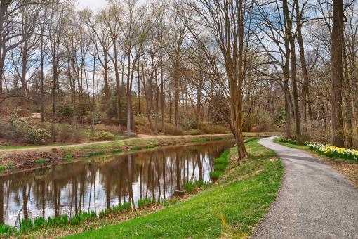 Free Stock Photo of Winding Brookside Trail