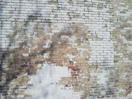Free Stock Photo of White Washed Brick Wall