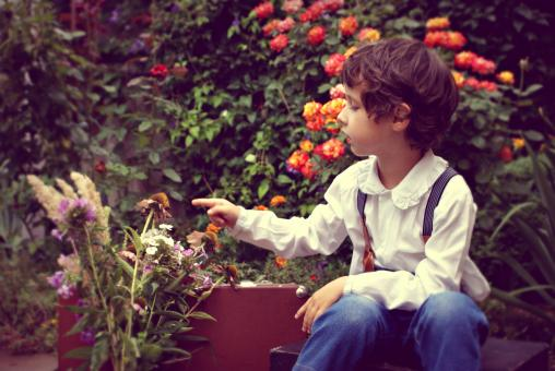 Free Stock Photo of Boy Playing with Flowers