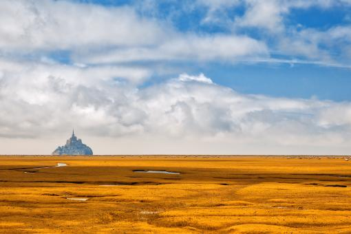 Free Stock Photo of Normandy Gold Fantasy Pasture