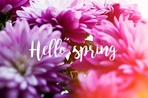 Free Stock Photo of Hello Spring