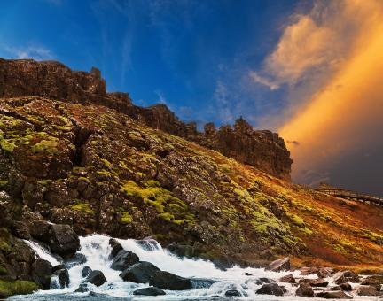 Free Stock Photo of Rugged Iceland Moss Sunset