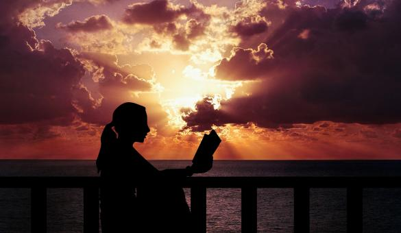 Free Stock Photo of Woman Reading at Dusk