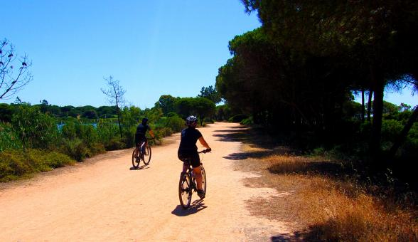 Free Stock Photo of People Riding Bikes - Sports - Bicycles - Algarve