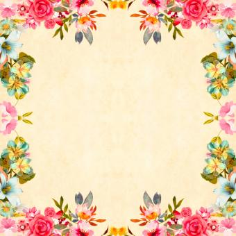 Free Stock Photo of Framed Flower Background