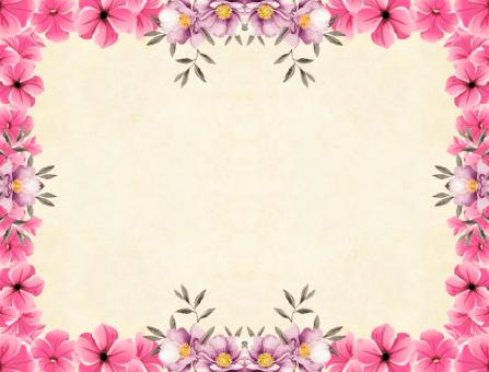 Free Stock Photo of Pink Floral Background