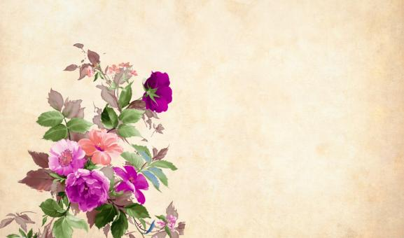 Free Stock Photo of Vintage Flower Paper Background