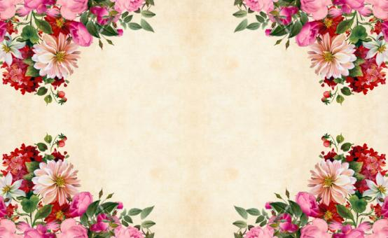 Free Stock Photo of Pink Flower Background