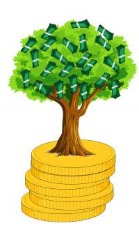 Free Stock Photo of Money Tree