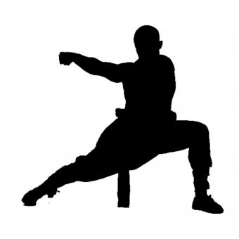 Free Stock Photo of Kung Fu Silhouette