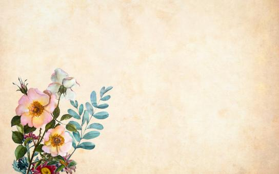 Free Stock Photo of Vintage Background with Flowers