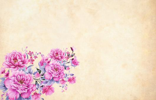 Free Stock Photo of Pink Vintage Flower Background