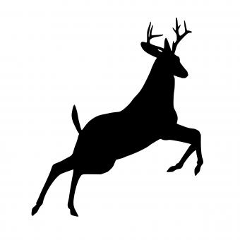 Free Stock Photo of Reindeer Silhouette