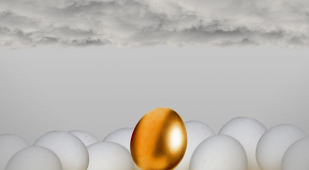 Free Stock Photo of Golden Egg