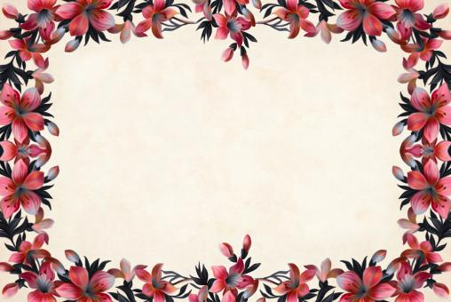 Free Stock Photo of Red Flower Background