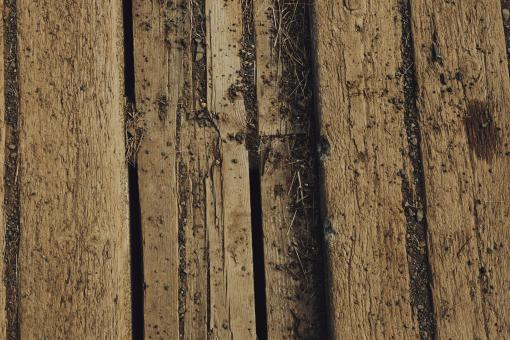 Free Stock Photo of Old Worn Wood Surface