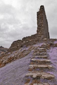 Free Stock Photo of Dolwyddelan Step Castle Ruins - Purple Fantasy