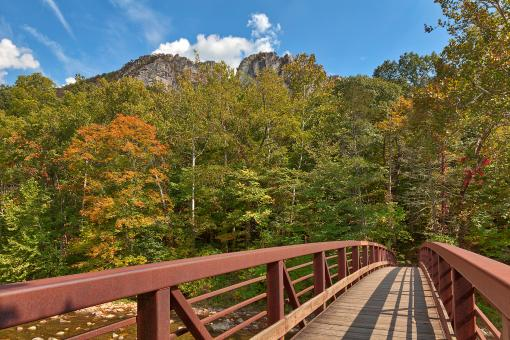 Free Stock Photo of Seneca Rocks Bridge