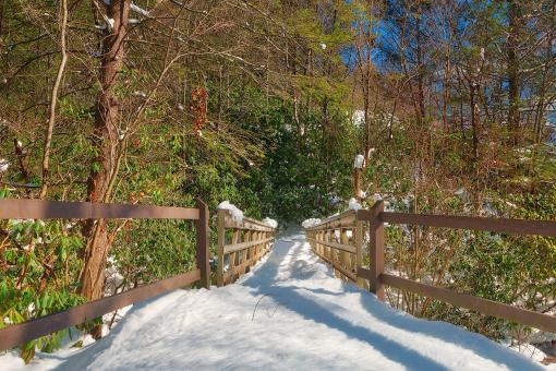 Free Stock Photo of Hickory Run Winter Bridge