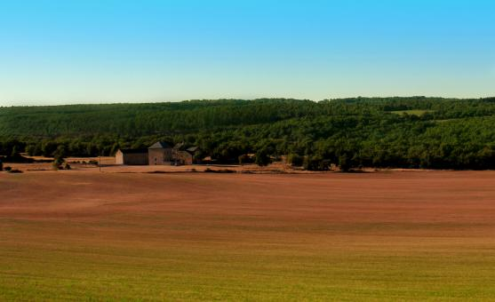 Free Stock Photo of Farm - Rural Landscape - Southern France - Languedoc