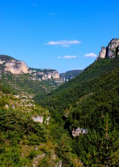 Free Stock Photo of Typical Landscape in Gorges du Tarn - Southern France