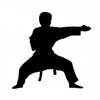 Free Stock Photo of Karate Fighter Silhouette