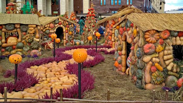 Free Stock Photo of Halloween Village in Moscow