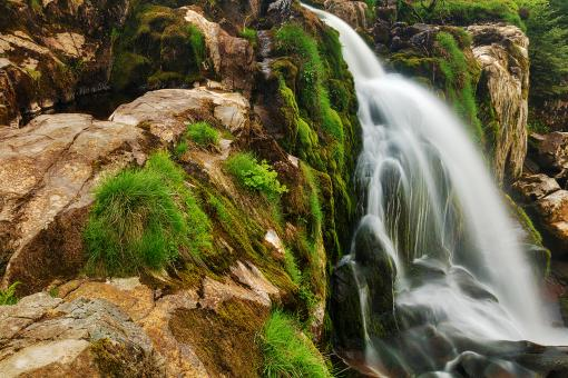 Free Stock Photo of Loup of Fintry Moss Waterfall