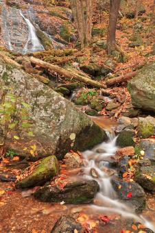Free Stock Photo of Rugged Autumn Wigwam Creek