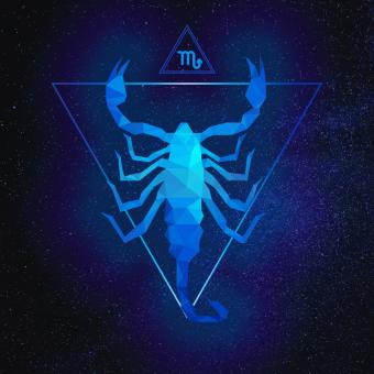 Free Stock Photo of Scorpion Polygonal Artwork