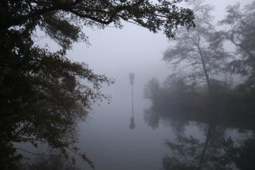 Free Stock Photo of Misty river